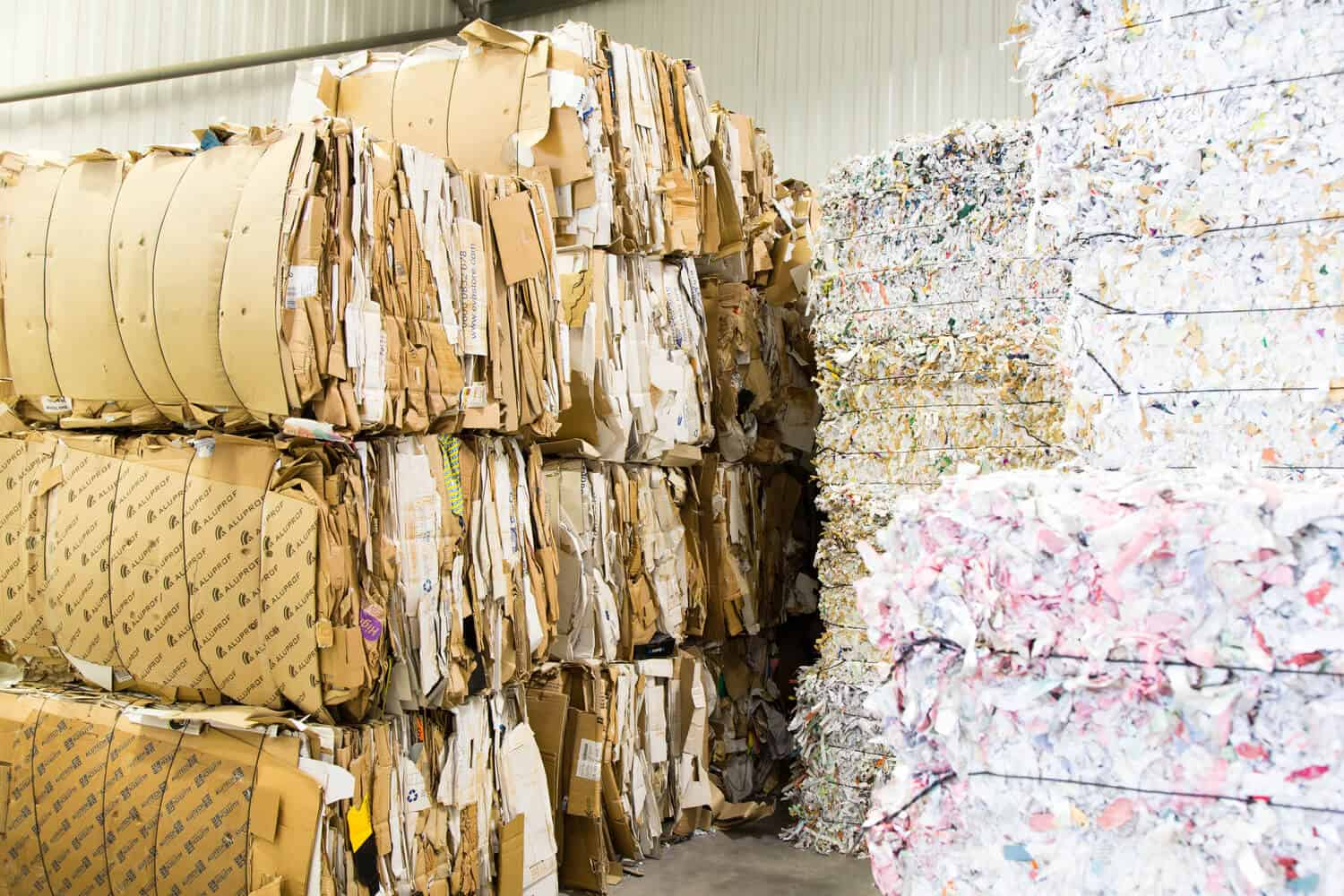 cardboard and paper stacked in bales